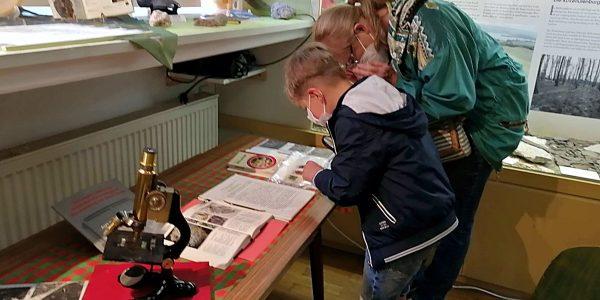 Heimathaus Alte Mühle eröffnet neue Ausstellung über Fossilien