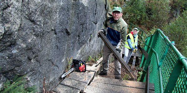 Treppenerneuerung auf der Adlerklippe