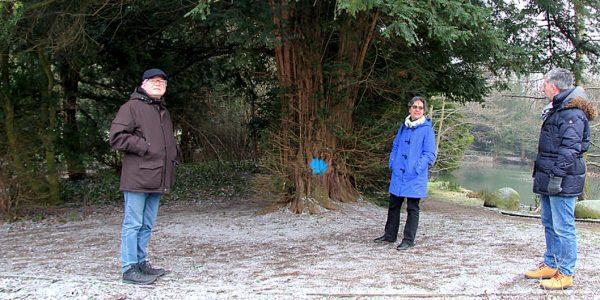 Sanierungsmaßnahmen Stadtpark Oker